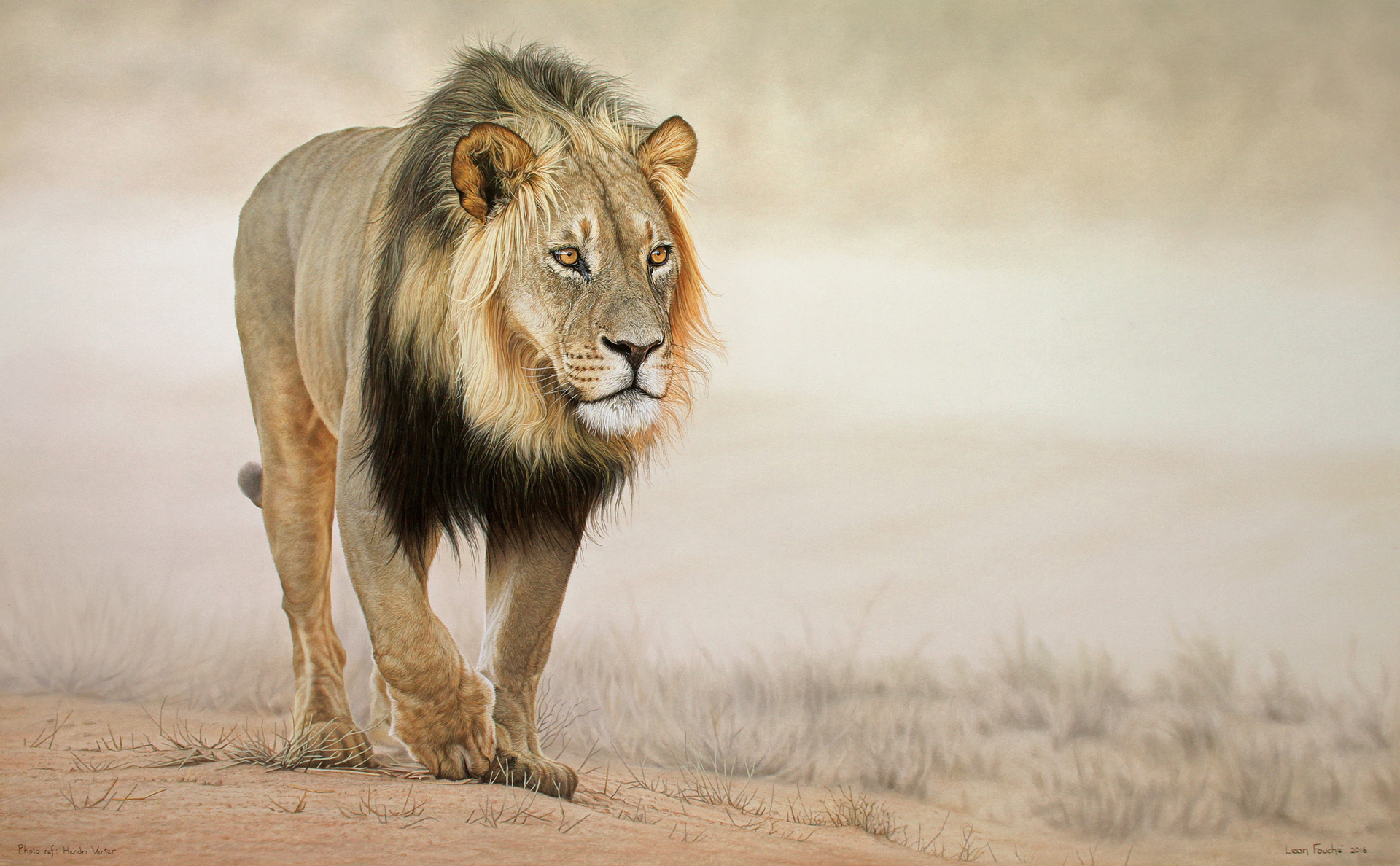 African Animal Paintings By Famous Artists